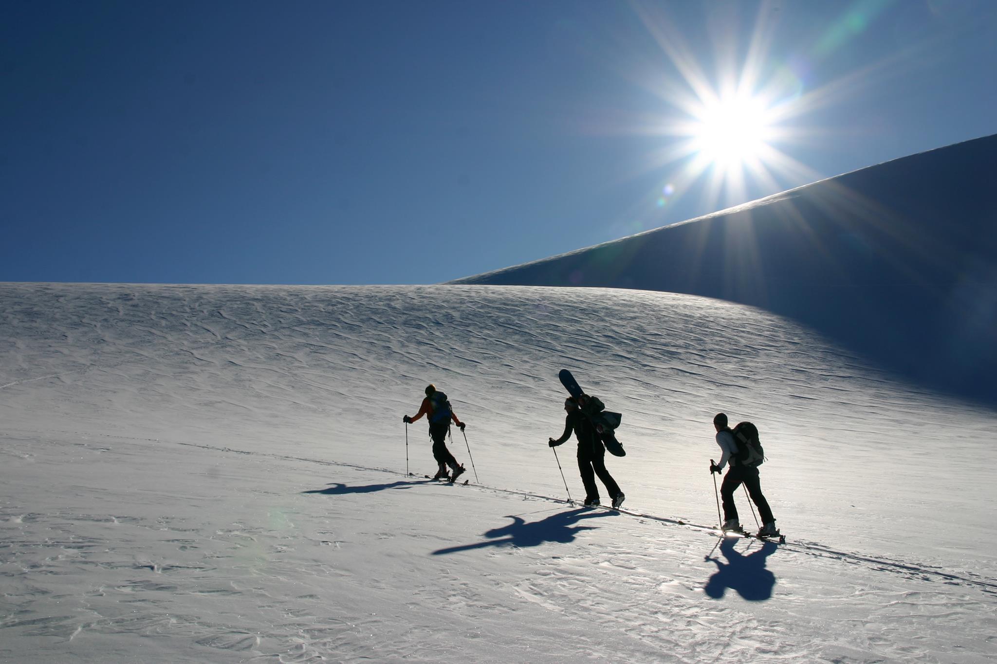 Geführte Schneeschuh- oder Skitouren